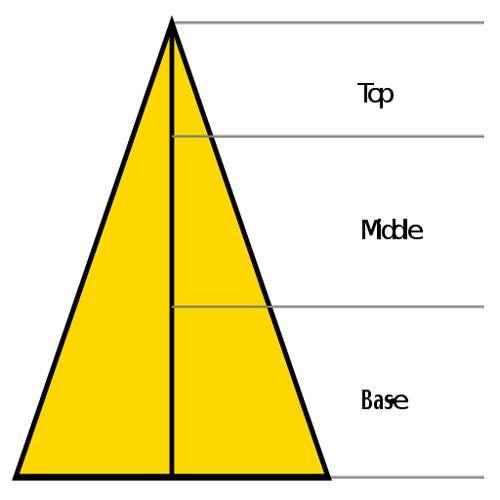 Piramide-olfattiva